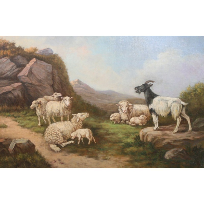 A. Keller-Sheep in the mountains