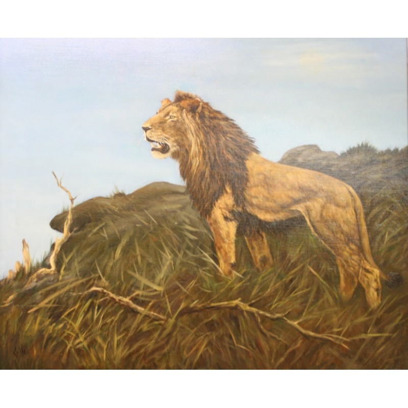A. Keller-lion in the wild